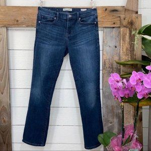 Banana Republic Premium Denim Straight Leg